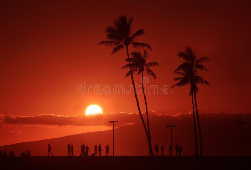 Ηλιοβασίλεμα νησιών στοκ εικόνα με δικαίωμα ελεύθερης χρήσης