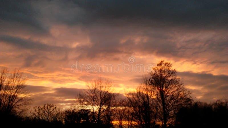 Ηλιοβασίλεμα ομορφιάς μετά από τα ρόδινα κίτρινα δέντρα σύννεφων θύελλας στοκ εικόνες