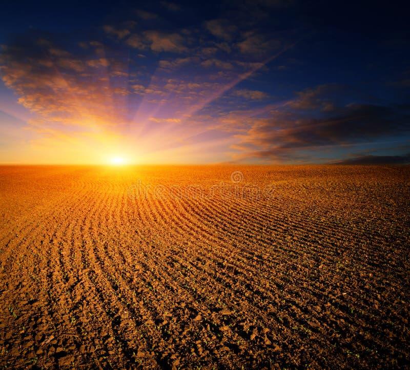 Ηλιοβασίλεμα πέρα από οργωμένος fild στοκ φωτογραφία