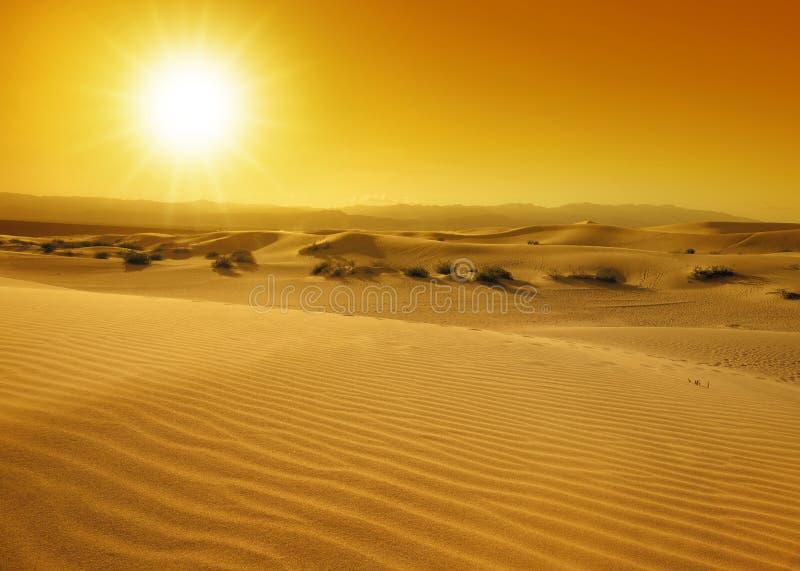 Ηλιοβασίλεμα πέρα από τους αμμόλοφους άμμου στοκ φωτογραφία