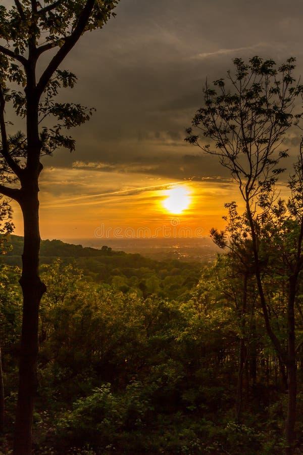 Ηλιοβασίλεμα πέρα από το δάσος στοκ φωτογραφίες