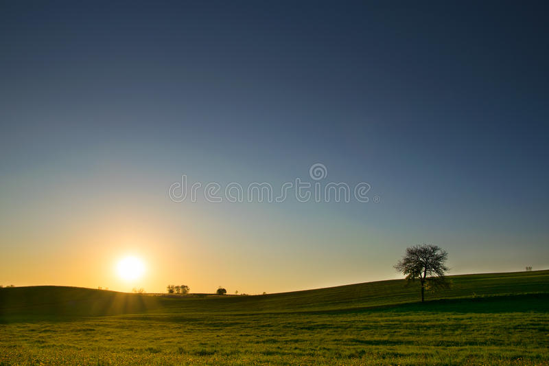 Ηλιοβασίλεμα πέρα από το λιβάδι 1a στοκ εικόνα