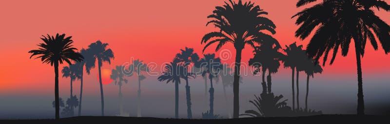 ηλιοβασίλεμα παραλιών τ&rho απεικόνιση αποθεμάτων