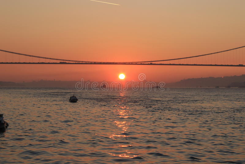 Ηλιοβασίλεμα πουλιών της Κωνσταντινούπολης Βόσπορος Turkay στοκ εικόνα με δικαίωμα ελεύθερης χρήσης
