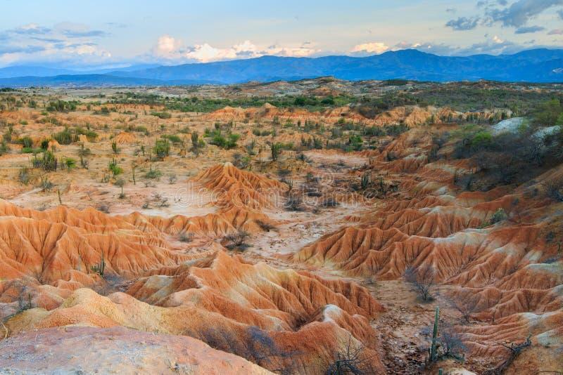 Ηλιοβασίλεμα στην κόκκινη έρημο στοκ εικόνες με δικαίωμα ελεύθερης χρήσης