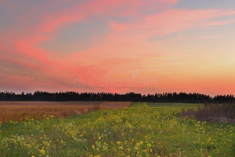 Ηλιοβασίλεμα στον τομέα φθινοπώρου στοκ εικόνες με δικαίωμα ελεύθερης χρήσης