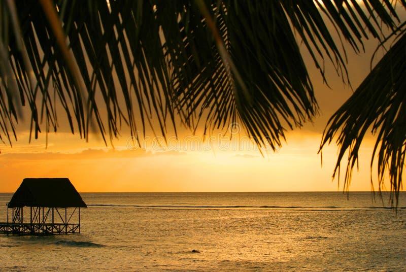 ηλιοβασίλεμα στο Μαυρίκιο στοκ εικόνες