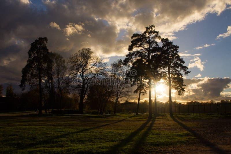 Ηλιοβασίλεμα στο πάρκο στοκ εικόνα με δικαίωμα ελεύθερης χρήσης
