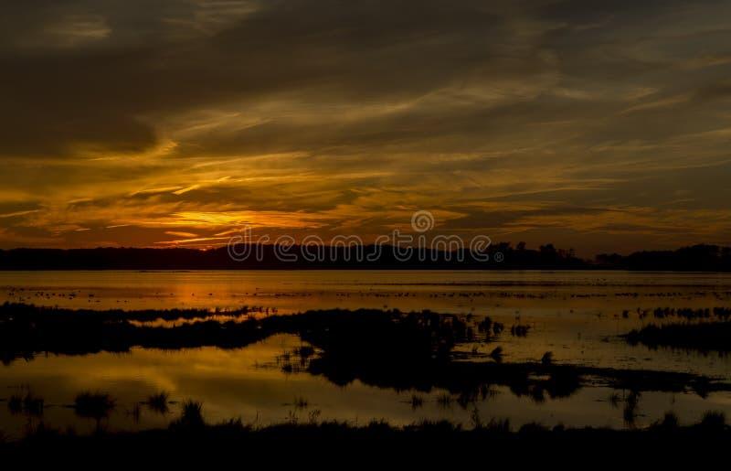 Ηλιοβασίλεμα στο Drive άγριας φύσης στοκ φωτογραφία με δικαίωμα ελεύθερης χρήσης