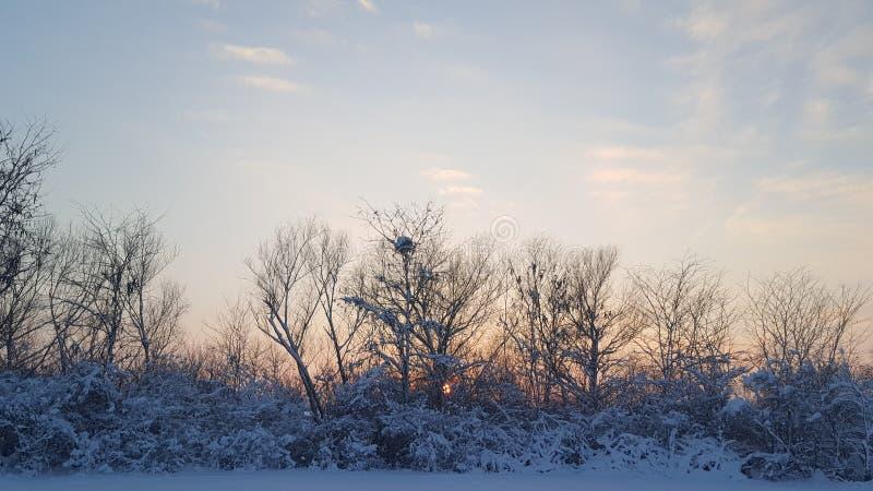 Ηλιοβασίλεμα του χειμώνα στοκ εικόνες