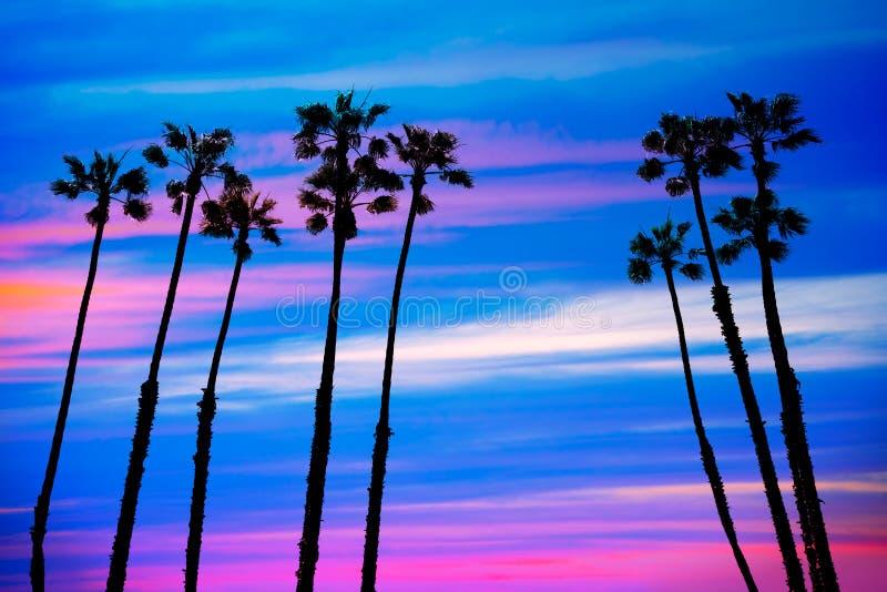 Ηλιοβασίλεμα φοινίκων Καλιφόρνιας με το ζωηρόχρωμο ουρανό στοκ φωτογραφίες με δικαίωμα ελεύθερης χρήσης