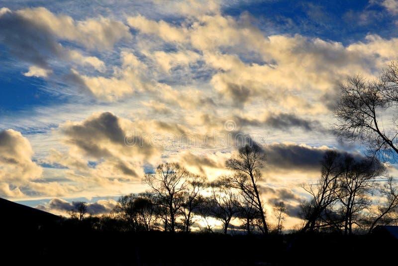 Ηλιοβασίλεμα χειμερινού λυκόφατος πέρα από το δάσος στοκ εικόνα