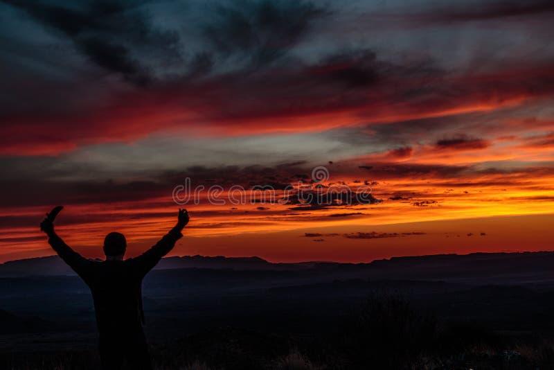 Ηλιοβασίλεμα Silhoette Vista Sotol στοκ εικόνα