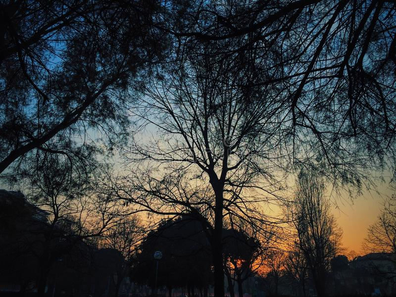 Ηλιοβασίλεμα siluate στοκ φωτογραφία