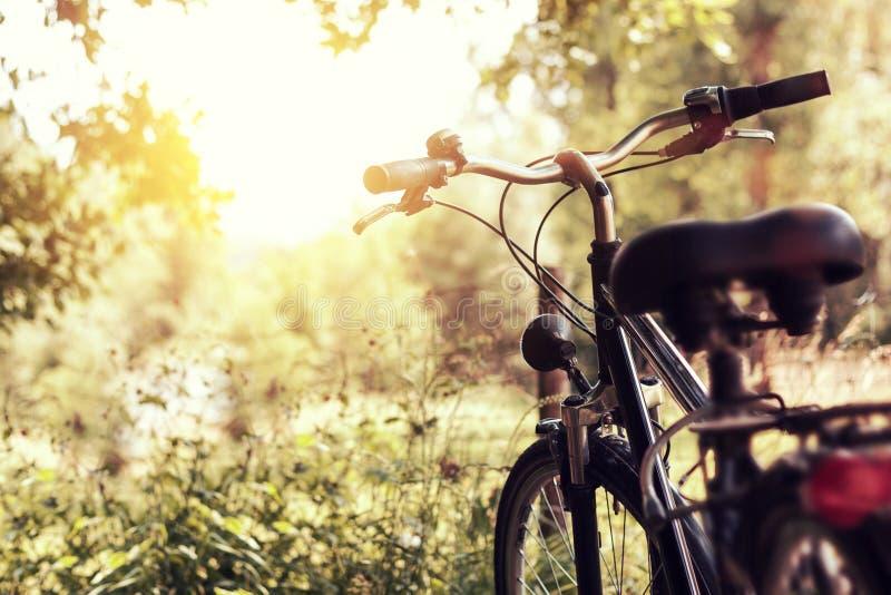 Ηλιοφάνεια και μόνιμο ποδήλατο στη φύση στοκ φωτογραφία