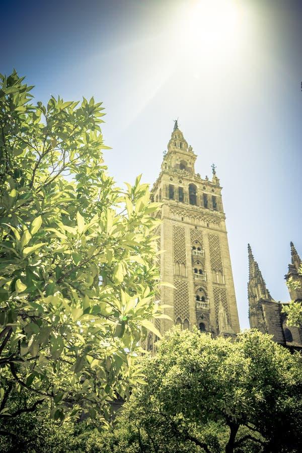 Ηλιοφάνεια πέρα από τον πύργο κουδουνιών Giralda του καθεδρικού ναού στη Σεβίλη στοκ εικόνες