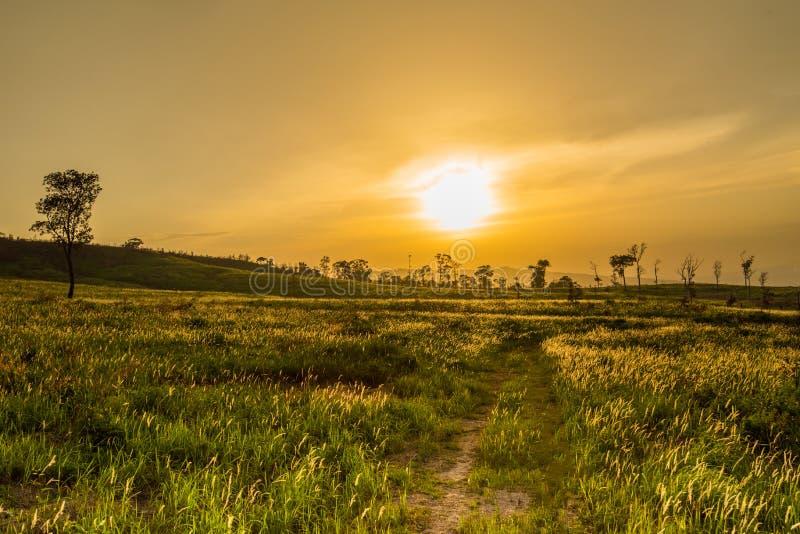 Ηλιοφάνεια στοκ φωτογραφία