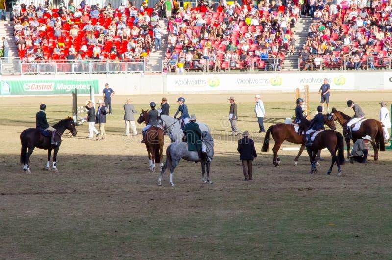Η ιππασία παρουσιάζει ότι σε Πάσχα παρουσιάστε στοκ φωτογραφίες