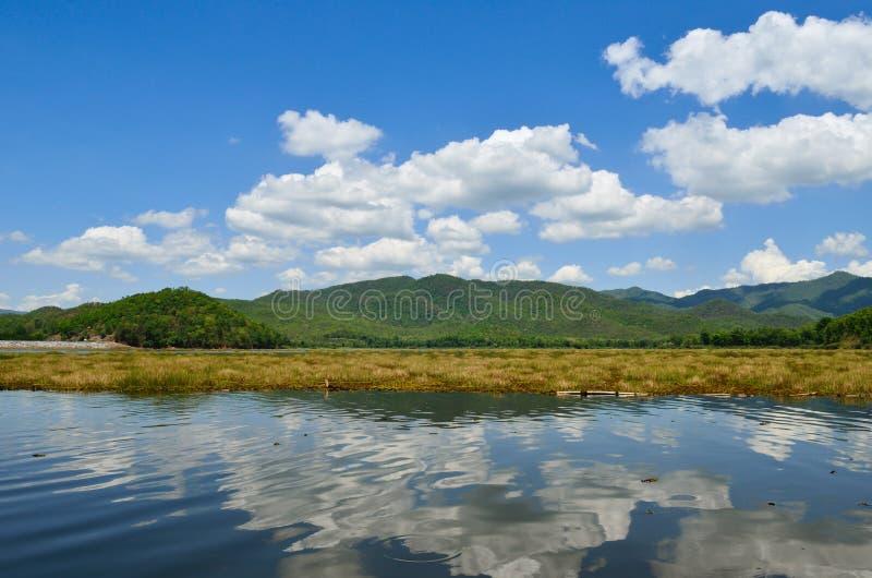 ηλιόλουστα δέντρα λιμνών η& στοκ εικόνα με δικαίωμα ελεύθερης χρήσης