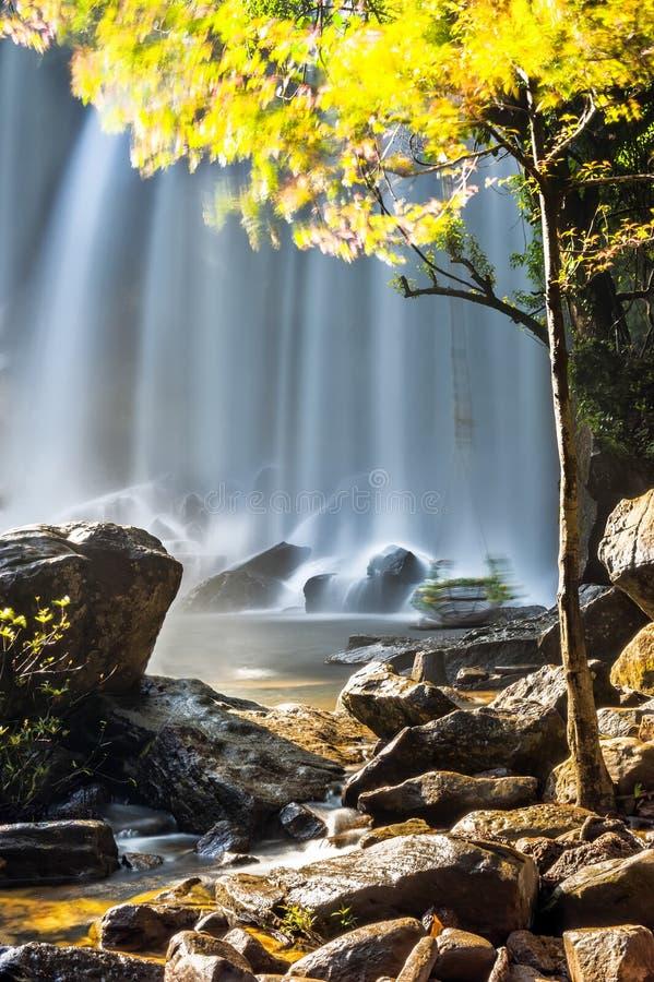 Ηλιόλουστη ημέρα στο τροπικό τοπίο τροπικών δασών με το ρέοντας μπλε wa στοκ φωτογραφία με δικαίωμα ελεύθερης χρήσης