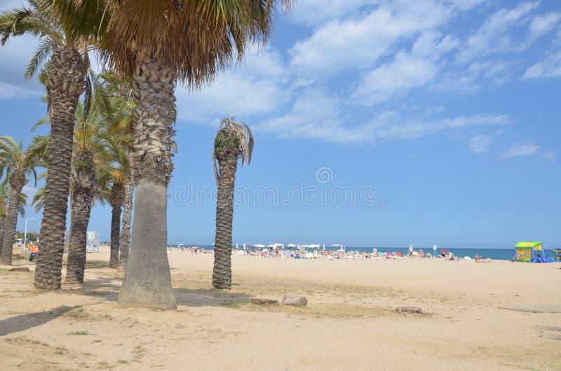 Ηλιόλουστη παραλία σε Κόστα Μπράβα στοκ εικόνα με δικαίωμα ελεύθερης χρήσης