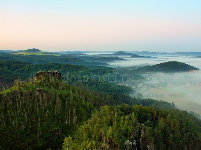 Ηλιόλουστο πρωί φθινοπώρου επάνω από το δάσος θανάτου στο δύσκολο λόφο Οι ξηροί κορμοί κολλούν επάνω στοκ εικόνες με δικαίωμα ελεύθερης χρήσης