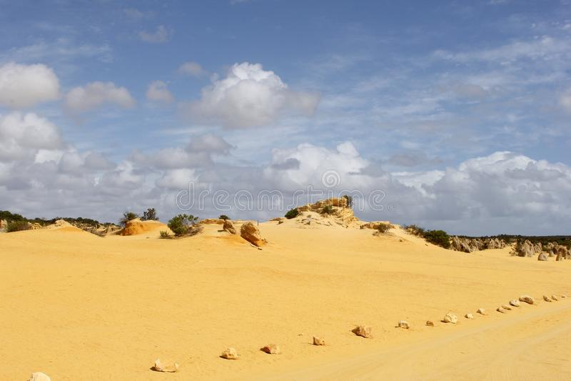 Η κίτρινη άμμος sunes στις πυραμίδες εγκαταλείπει, εθνικό πάρκο Nambung, δυτική Αυστραλία στοκ εικόνα με δικαίωμα ελεύθερης χρήσης