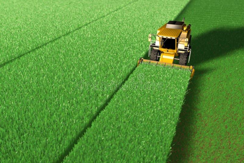 Η κίτρινη θεριστική μηχανή σίκαλης λειτουργεί στο μεγάλο πράσινο τομέα - τοπ άποψη που δίνεται στο εναέριο ύφος βλαστών, βιομηχαν απεικόνιση αποθεμάτων