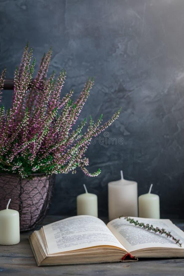 Η καλλιεργημένη σε δοχείο ρόδινη vulgaris ή κοινή ερείκη calluna ανθίζει τη στάση στο ξύλινο υπόβαθρο με ένα παλαιό βιβλίο στοκ φωτογραφία με δικαίωμα ελεύθερης χρήσης