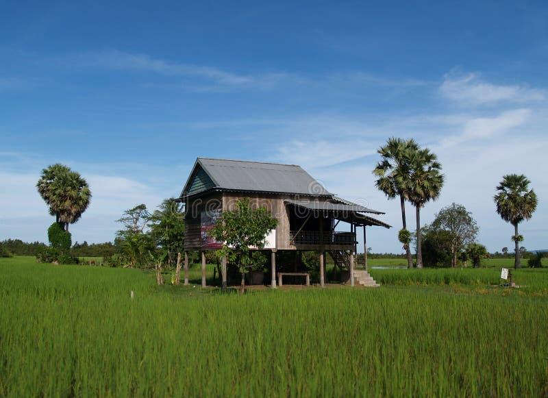 η Καμπότζη στεγάζει αγροτικό Στοκ Φωτογραφία