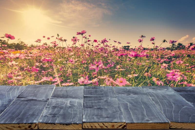 Η κενή ξύλινη επιτραπέζια κορυφή για το montage επίδειξης προϊόντων και ο κόσμος ανθίζουν και φως του ήλιου στον κήπο στοκ εικόνες
