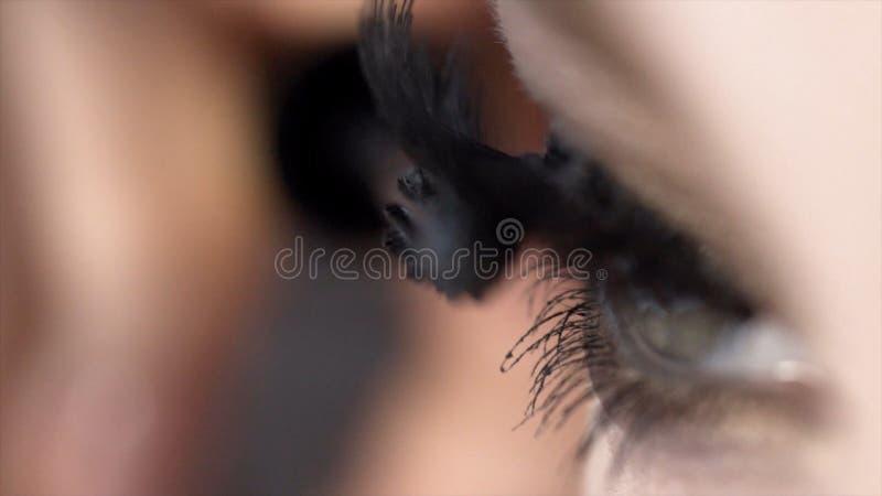 Η κινηματογράφηση σε πρώτο πλάνο εφαρμόζει mascara στα eyelashes του όμορφου θηλυκού ματιού r Απίστευτο μήκος μαστιγίων με την έξ στοκ εικόνες