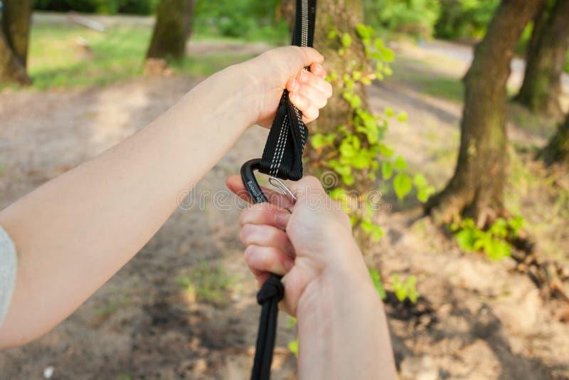 Η κινηματογράφηση σε πρώτο πλάνο των χεριών γυναικών συνδέει τα λουριά αιωρών στο δέντρο στοκ εικόνα με δικαίωμα ελεύθερης χρήσης