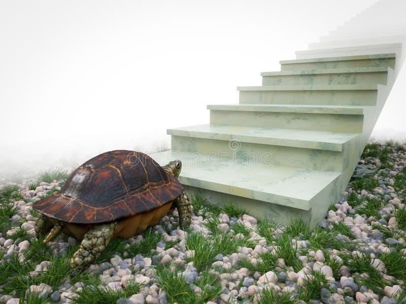 Η κινούμενη χελώνα θέλει να αναρριχηθεί στη σύνθεση έννοιας σκαλοπατιών στοκ εικόνες