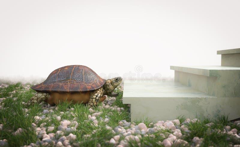 Η κινούμενη χελώνα θέλει να αναρριχηθεί στη σύνθεση έννοιας σκαλοπατιών στοκ φωτογραφία