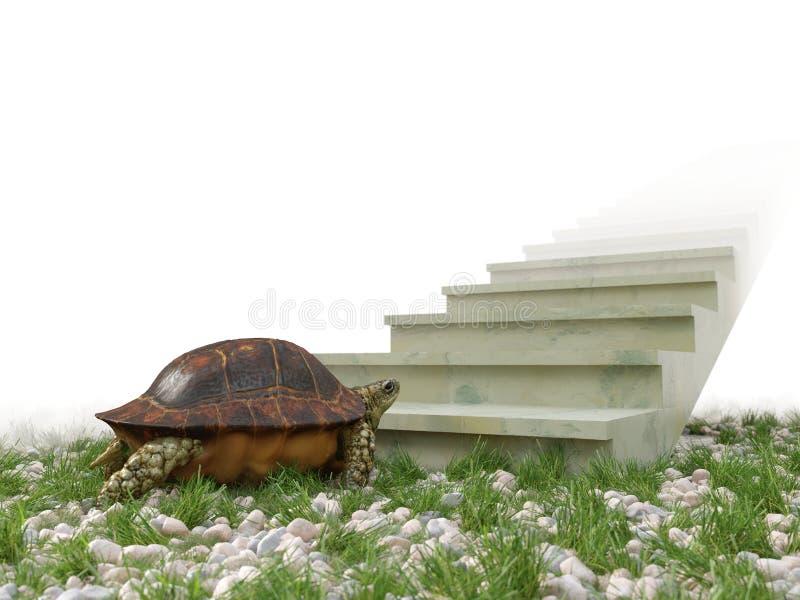 Η κινούμενη χελώνα θέλει να αναρριχηθεί στο υπόβαθρο έννοιας σκαλοπατιών στοκ φωτογραφίες