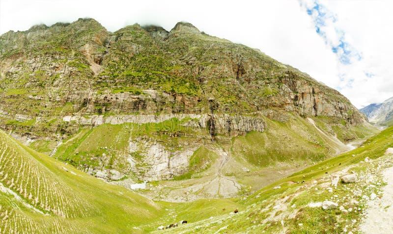 Η κοιλάδα του ποταμού Chenab στα Ιμαλάια Βουνά που εισβάλλονται τα ρεύματα με τα δάση, κατά μήκος των οποίων ρέουν κάτω στοκ εικόνα με δικαίωμα ελεύθερης χρήσης