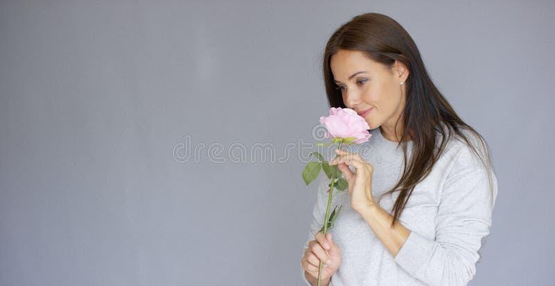 Η κομψή όμορφη εκμετάλλευση γυναικών αυξήθηκε λουλούδι στοκ φωτογραφία