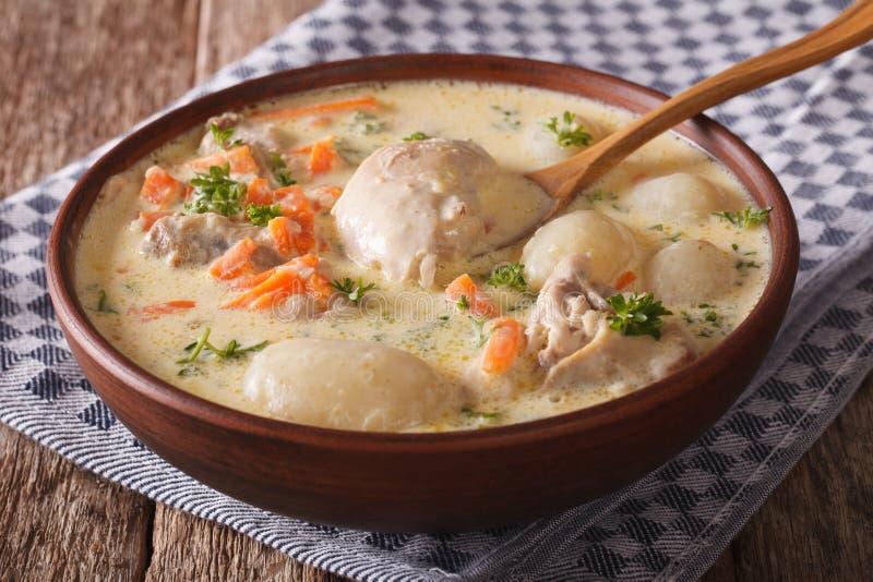 Η κρεμώδης σούπα με το κοτόπουλο και τα λαχανικά κλείνουν επάνω σε ένα κύπελλο Hori στοκ φωτογραφία