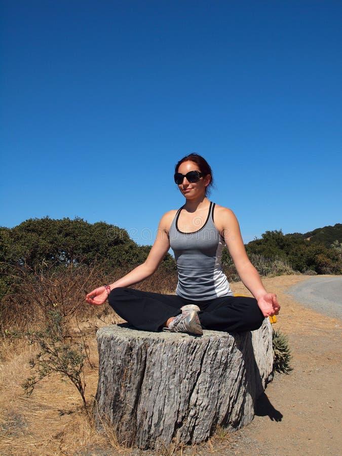 Η κυρία σούπερ σταρ γιόγκας κάθεται στο κολόβωμα δέντρων, meditates στοκ εικόνα με δικαίωμα ελεύθερης χρήσης