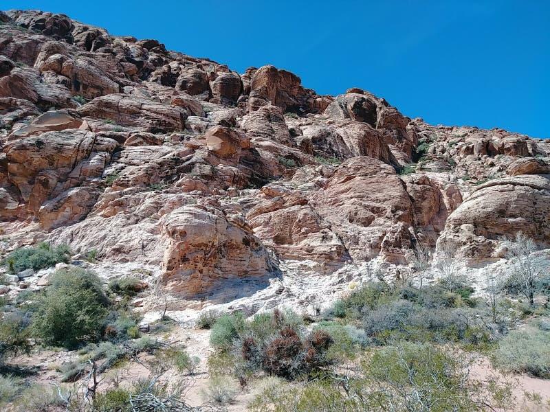 Η κόκκινη έρημος του Λας Βέγκας Νεβάδα βράχων λικνίζει τον ψαμμίτη στοκ εικόνα με δικαίωμα ελεύθερης χρήσης