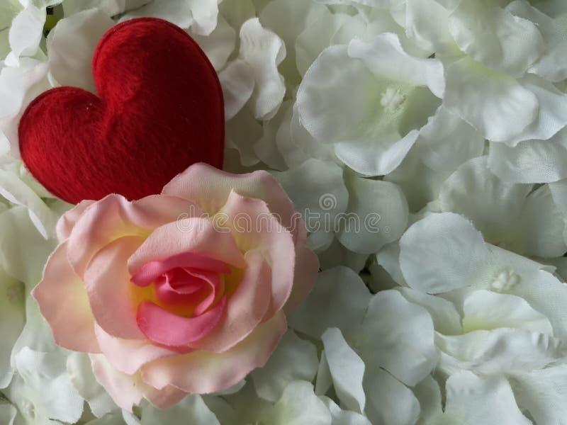 Η κόκκινη καρδιά αυξήθηκε υπόβαθρο λουλουδιών για την ημέρα Valention στοκ φωτογραφίες με δικαίωμα ελεύθερης χρήσης