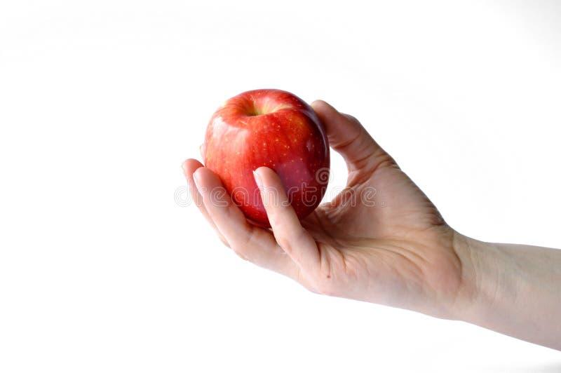 Η κόκκινη Apple που απομονώνεται υπό εξέταση στο άσπρο υπόβαθρο στοκ εικόνες