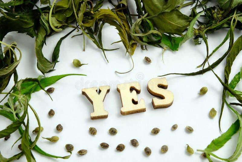 Η λέξη ΝΑΙ σχεδιάζεται των ξύλινων επιστολών στο κέντρο του πλαισίου από τα ξηρά φύλλα της μαριχουάνα και τα σιτάρια του canna στοκ εικόνες με δικαίωμα ελεύθερης χρήσης