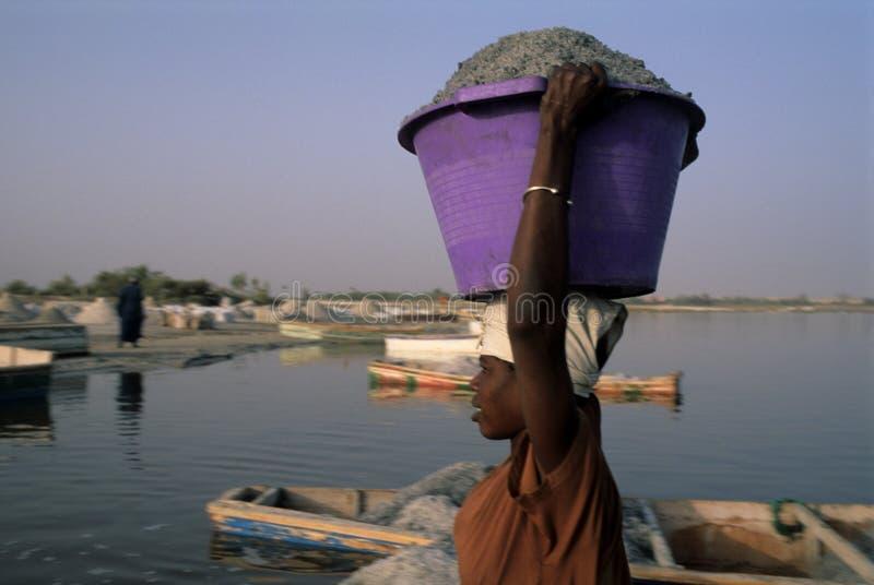 η λίμνη αυξήθηκε Σενεγάλη στοκ φωτογραφίες