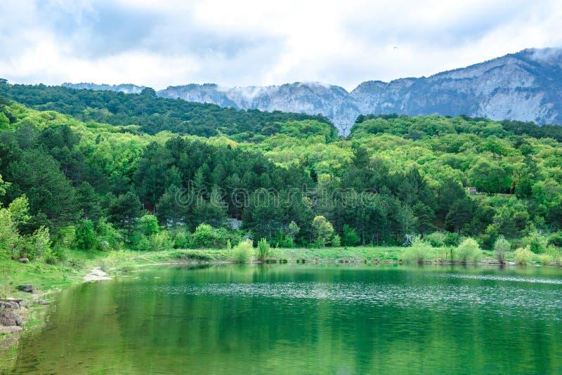 Η λίμνη με το σμαραγδένιο νερό περιβάλλεται από τα κωνοφόρα δάση και τα βουνά στοκ φωτογραφία με δικαίωμα ελεύθερης χρήσης