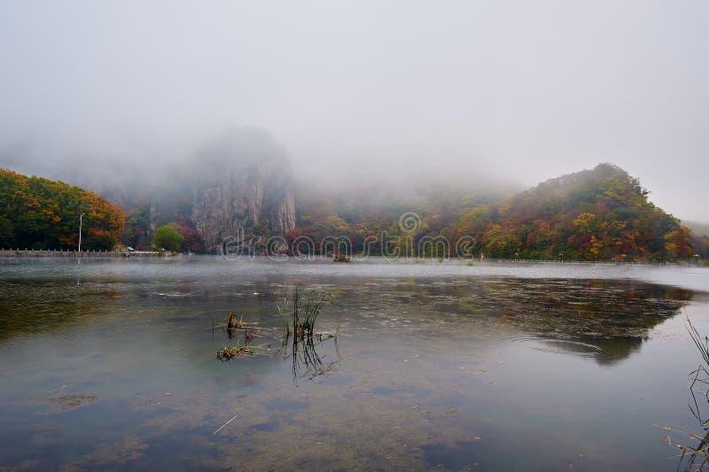 Η λίμνη στην ομίχλη το πρωί φυσικό στοκ φωτογραφία