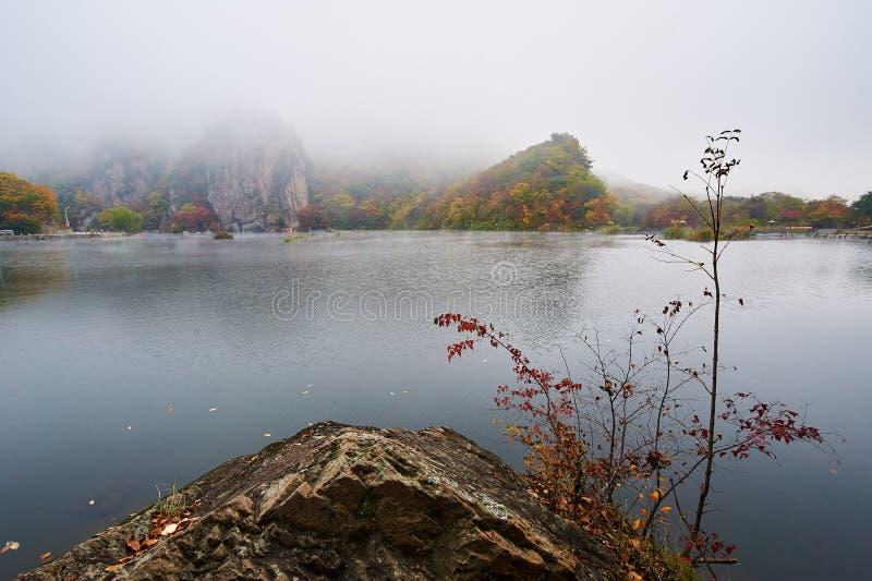 Η λίμνη φθινοπώρου στην ομίχλη το πρωί φυσικό στοκ φωτογραφίες
