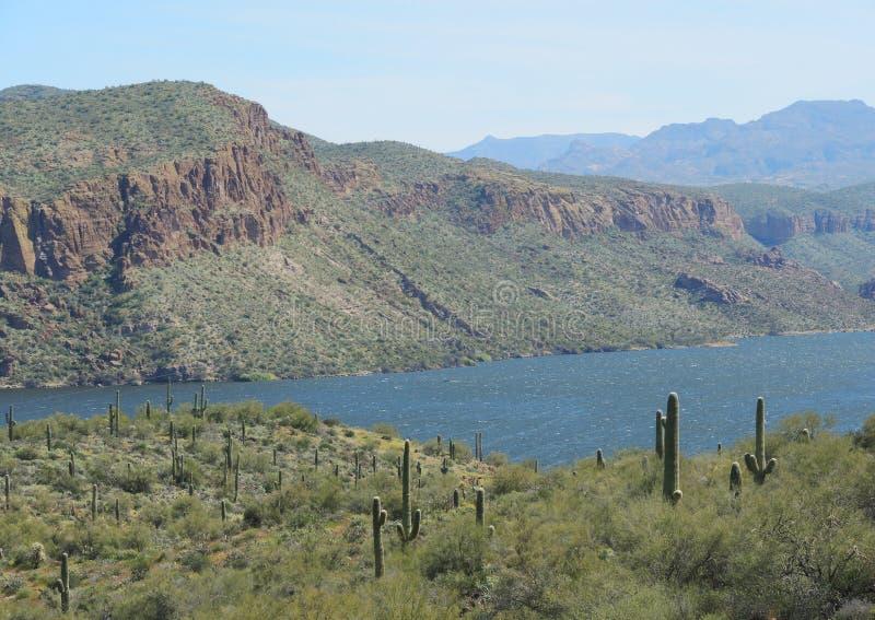 Η λίμνη Apache στη μέση της ερήμου είναι μια ευχάριστη έκπληξη στοκ φωτογραφία με δικαίωμα ελεύθερης χρήσης