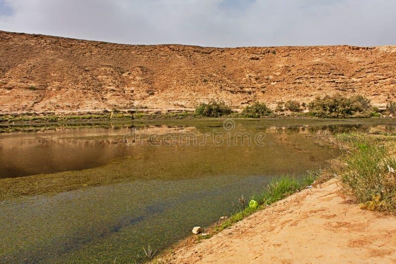 Η λίμνη Naquibs είναι μια μικρή φυσική του γλυκού νερού λίμνη κοντά στο Ριάντ στοκ φωτογραφία με δικαίωμα ελεύθερης χρήσης